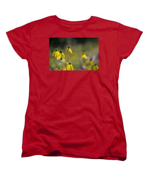 Wild Flowers Women's T-Shirt (Standard Cut) by Daniel Sheldon