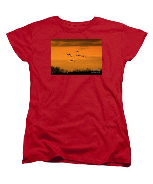 Winter Landing No.2 Women's T-Shirt (Standard Cut) by Neal Eslinger