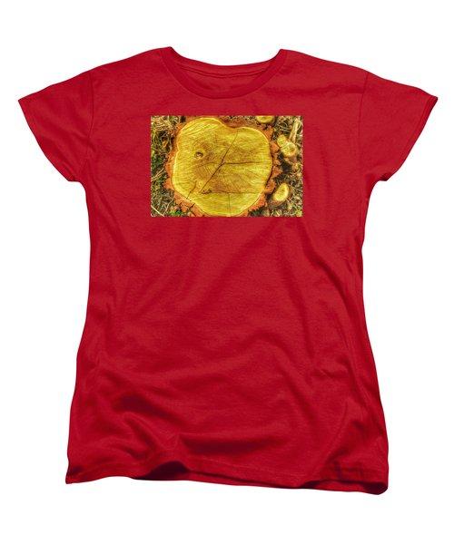 Wood Women's T-Shirt (Standard Cut) by Daniel Precht