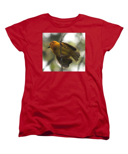 Yellow Bird Women's T-Shirt (Standard Cut) by Steve Archbold