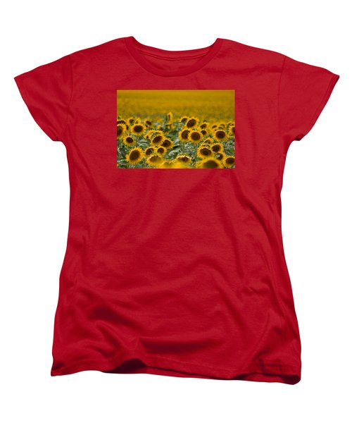 Women's T-Shirt (Standard Cut) featuring the photograph Yellow by Ronda Kimbrow