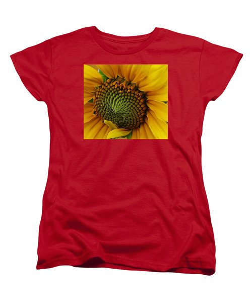 Sunflower Close Up Women's T-Shirt (Standard Cut) by Bruce Bley