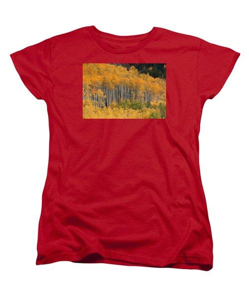 Women's T-Shirt (Standard Cut) featuring the photograph Autumn Curtain by Jim Garrison