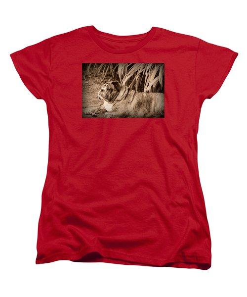 Baydie Women's T-Shirt (Standard Cut) by Jeanette C Landstrom