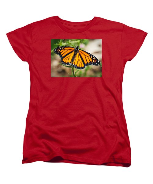 Women's T-Shirt (Standard Cut) featuring the photograph Beautiful Boy by Cheryl Baxter