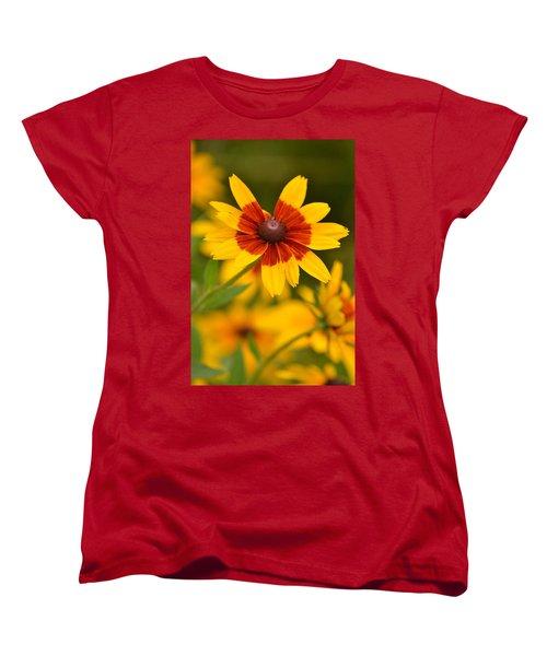 Women's T-Shirt (Standard Cut) featuring the photograph Blush-eyed Susan by JD Grimes