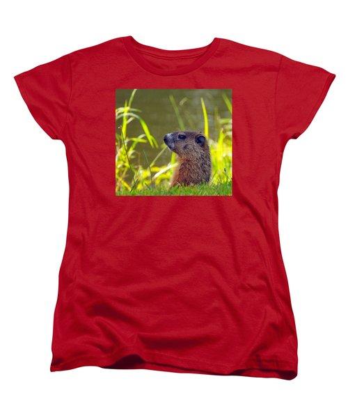 Chucky Woodchuck Women's T-Shirt (Standard Cut) by Paul Ward