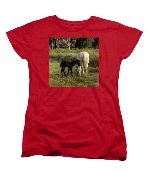 Cracker Foal And Mare Women's T-Shirt (Standard Cut) by Lynn Palmer
