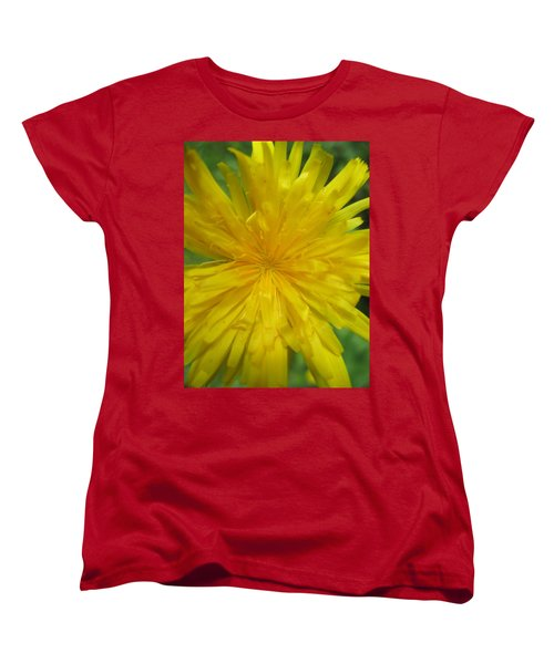 Dandelion Close Up Women's T-Shirt (Standard Cut) by Kym Backland