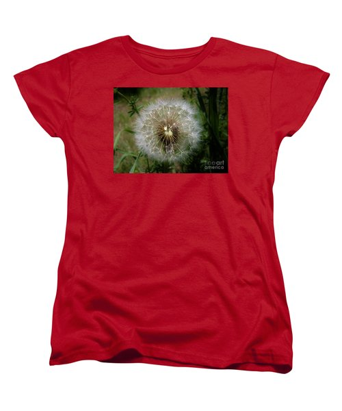 Women's T-Shirt (Standard Cut) featuring the photograph Dandelion Going To Seed by Sherman Perry