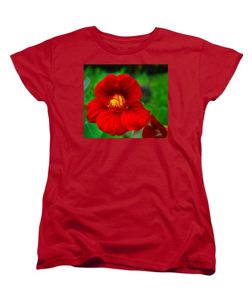 Women's T-Shirt (Standard Cut) featuring the photograph Day Lily by Bill Barber