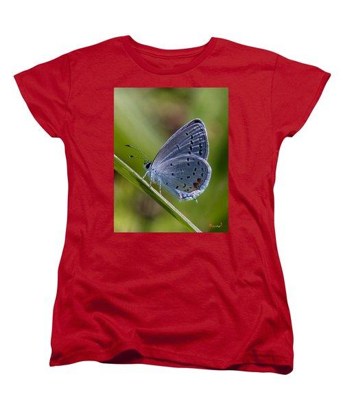 Eastern Tailed-blue Butterfly Din045 Women's T-Shirt (Standard Cut) by Gerry Gantt