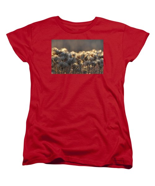 Women's T-Shirt (Standard Cut) featuring the photograph Gone To Seed by Fran Riley