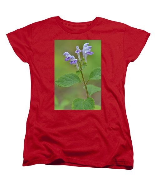 Women's T-Shirt (Standard Cut) featuring the photograph Hairy Skullcap by JD Grimes