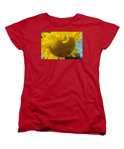 Women's T-Shirt (Standard Cut) featuring the photograph Hungover by Joseph Yarbrough