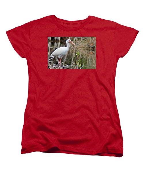 Ibis 1 Women's T-Shirt (Standard Cut) by Joe Faherty