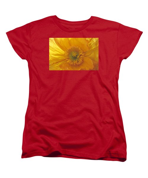 Women's T-Shirt (Standard Cut) featuring the photograph Iceland Poppy 4 by Susan Rovira