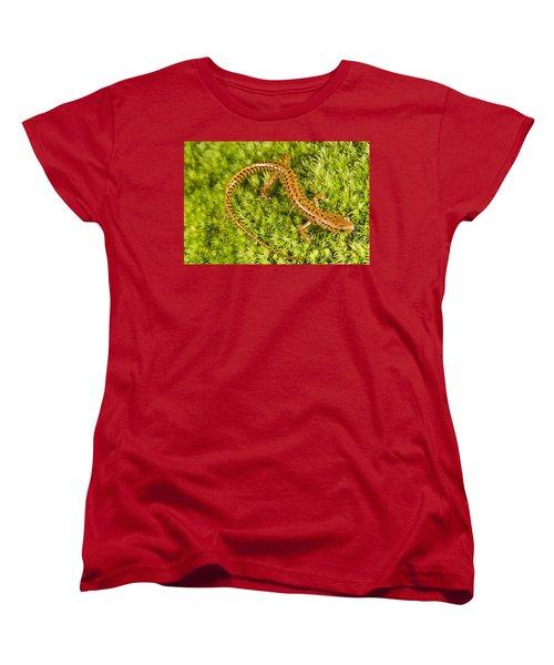 Longtail Salamander Eurycea Longicauda Women's T-Shirt (Standard Cut) by Jack Goldfarb