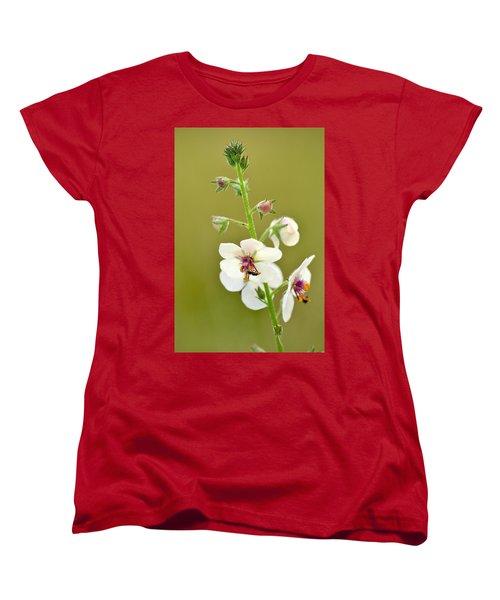 Women's T-Shirt (Standard Cut) featuring the photograph Moth Mullein by JD Grimes