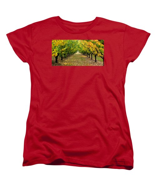 Pear Orchard Women's T-Shirt (Standard Cut) by Katie Wing Vigil