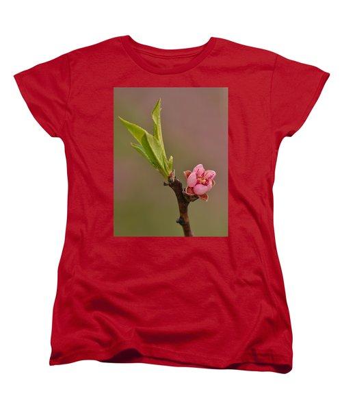 Petite Peach Women's T-Shirt (Standard Cut) by JD Grimes