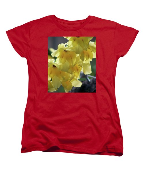 Women's T-Shirt (Standard Cut) featuring the photograph Radiance by Thomas Woolworth