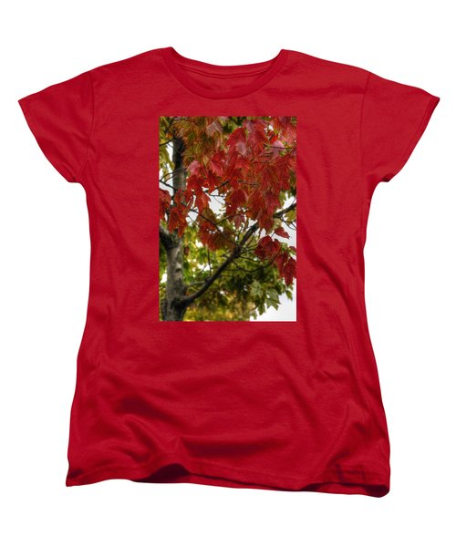 Women's T-Shirt (Standard Cut) featuring the photograph Red And Green Prior X-mas by Michael Frank Jr