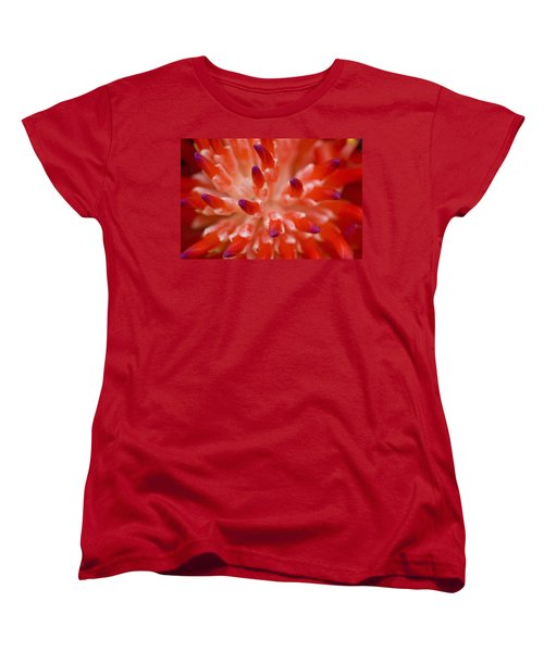 Red Bromeliad Women's T-Shirt (Standard Cut) by Rich Franco