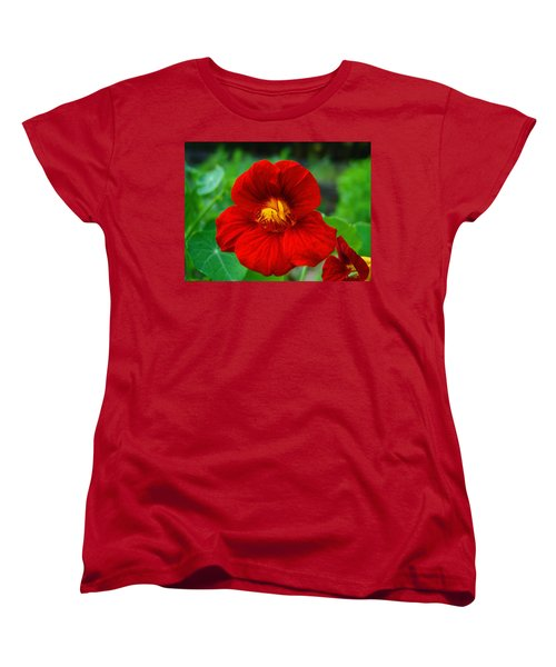 Women's T-Shirt (Standard Cut) featuring the photograph Red Daylily by Bill Barber