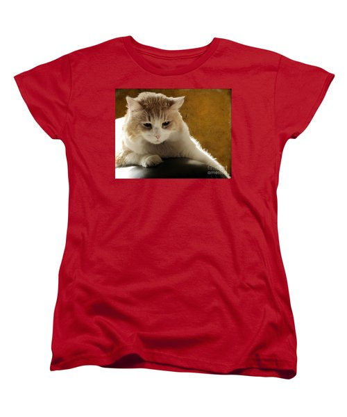 Squishy Women's T-Shirt (Standard Cut) by Ellen Cotton