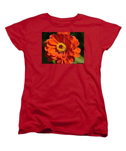 Women's T-Shirt (Standard Cut) featuring the photograph Sunny Delight by Lingfai Leung