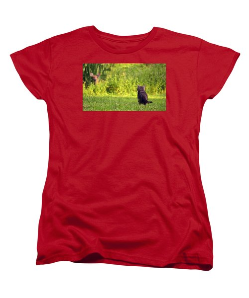 The Deer Hunter Women's T-Shirt (Standard Cut) by Lori Tambakis