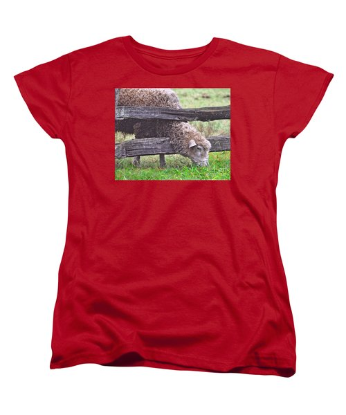 Women's T-Shirt (Standard Cut) featuring the photograph The Grass...on The Other Side by Lydia Holly
