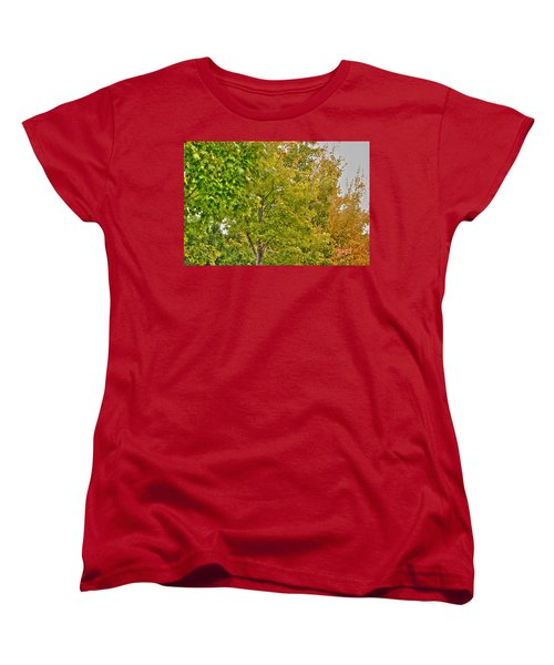 Women's T-Shirt (Standard Cut) featuring the photograph Transition Of Autumn Color by Michael Frank Jr