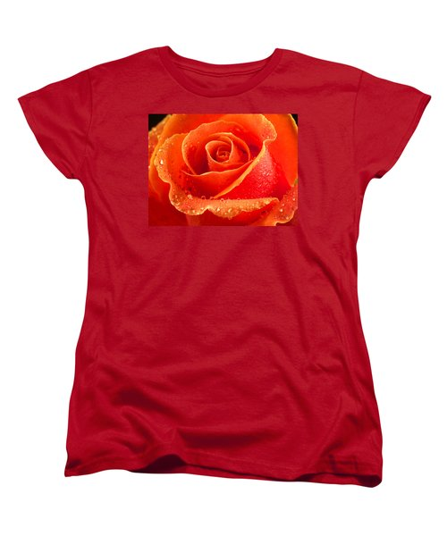 Wet Rose Women's T-Shirt (Standard Cut) by Jean Noren