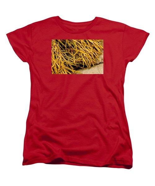 Yellow Kelp Women's T-Shirt (Standard Cut) by Brent L Ander