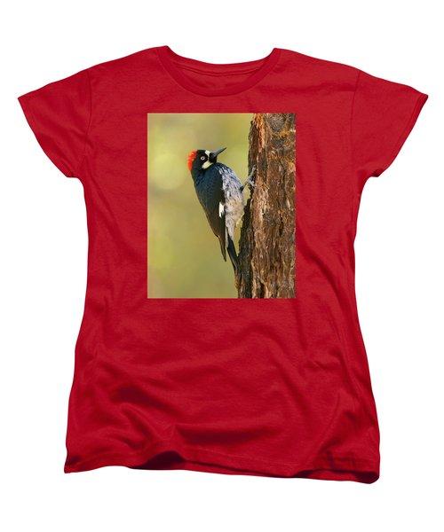 Acorn Woodpecker Women's T-Shirt (Standard Cut) by Doug Herr