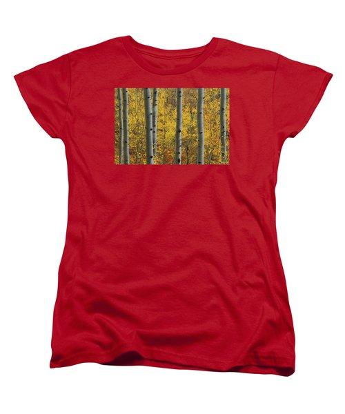 Aspen In Autumn At Mcclure Pass Women's T-Shirt (Standard Cut) by Jetson Nguyen