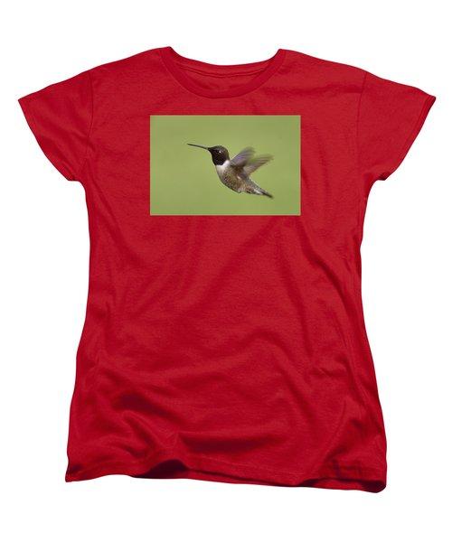 Black-chinned Hummingbird Women's T-Shirt (Standard Cut) by Doug Herr