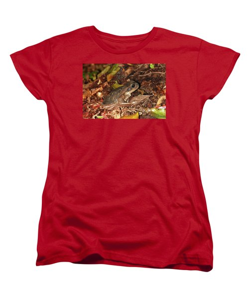 Cane Toad Women's T-Shirt (Standard Cut) by Breck Bartholomew