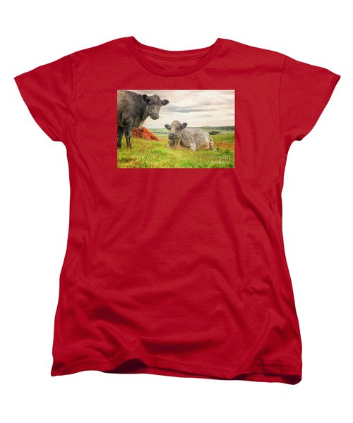 Colorful Highland Cattle Women's T-Shirt (Standard Cut) by Patricia Hofmeester