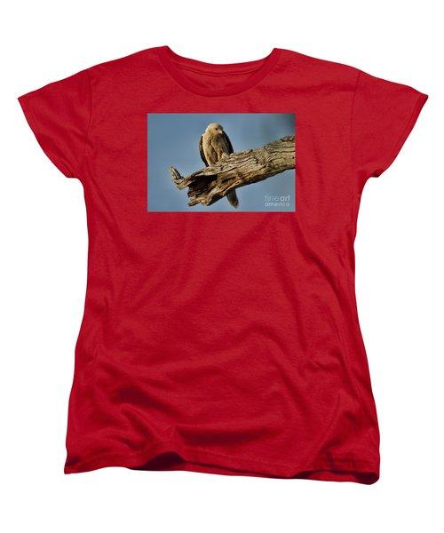 Women's T-Shirt (Standard Cut) featuring the photograph Curious by Douglas Barnard