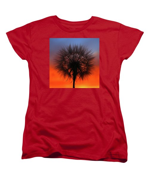 Dandelion Women's T-Shirt (Standard Cut) by Paul Marto