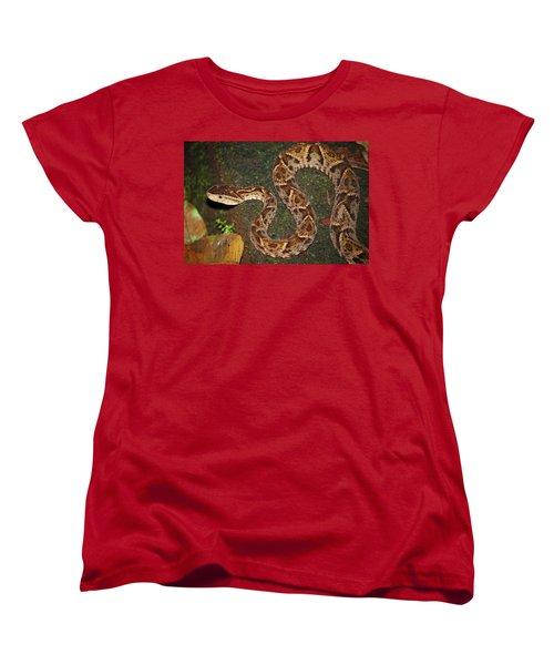 Women's T-Shirt (Standard Cut) featuring the photograph Fer-de-lance, Bothrops Asper by Breck Bartholomew