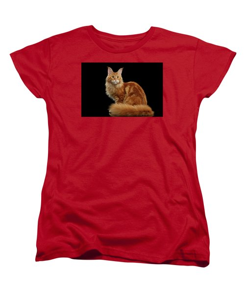 Ginger Maine Coon Cat Isolated On Black Background Women's T-Shirt (Standard Cut) by Sergey Taran