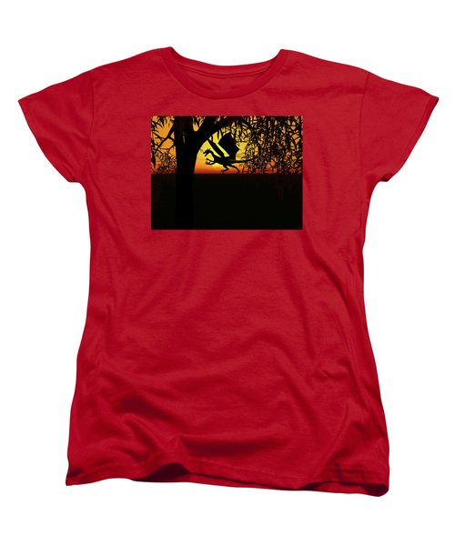 Lights And Shadow Women's T-Shirt (Standard Cut) by Michele Wilson