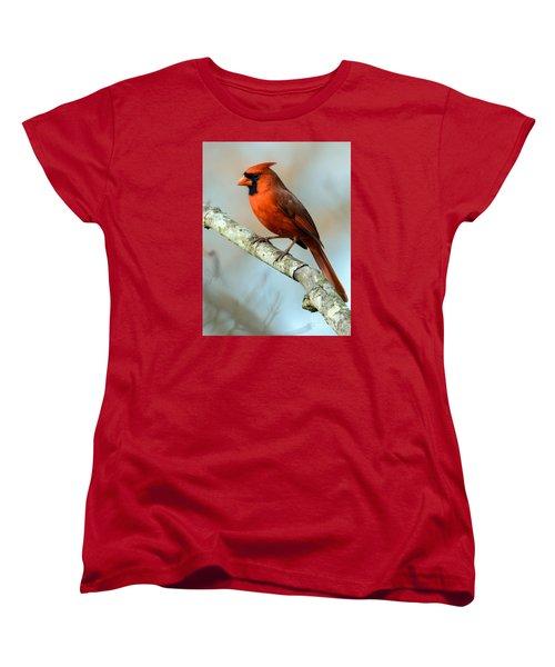 Male Cardinal Women's T-Shirt (Standard Cut) by Debbie Green