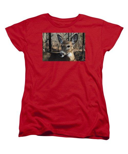 Mr. Cool Women's T-Shirt (Standard Cut) by Bill Stephens
