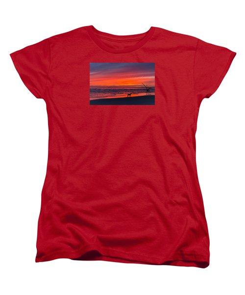 Nature Women's T-Shirt (Standard Cut)