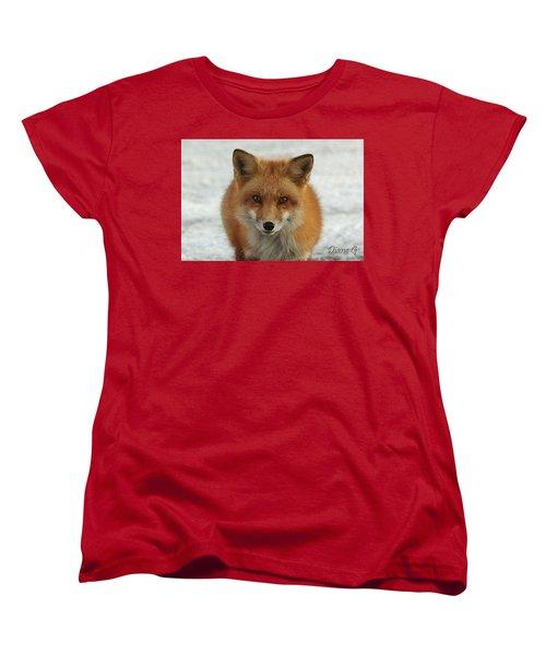 Red Fox Women's T-Shirt (Standard Cut) by Diane Giurco
